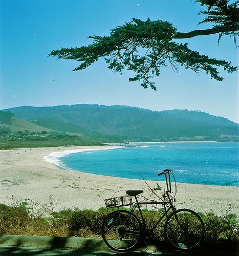 Biking through Monterey