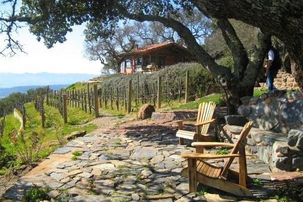 Kuleto Winery