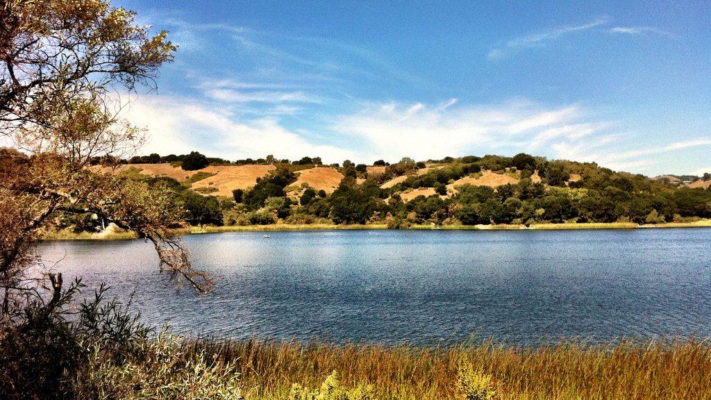 hiking near Moraga