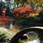 From Grinding Intensity To Green Tranquility: The Brooklyn Botanic Garden