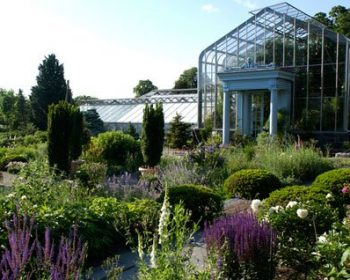 Flower garden with greenhouse at wave hill in the bronx