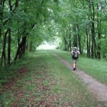 Hike Like a Local in Westchester: The Historic Croton Aqueduct Trail
