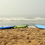 Braving the Waves: A Beginner's Guide to Surfing in Montauk