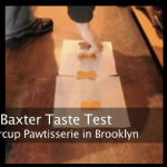 Baxter Hunts Down the Four Best Dog Biscuits in Brooklyn