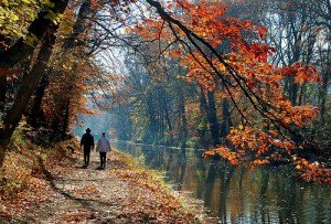 delaware towpath canal