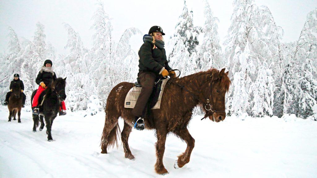 Snow Horseback Ride