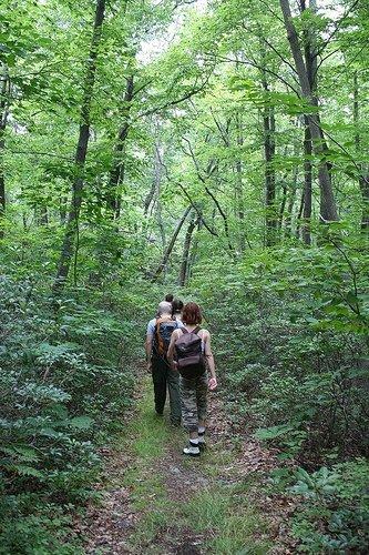 Outdoor Bound Hikes