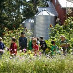 Little Locavore: 9 Green Activities for Kids in NYC