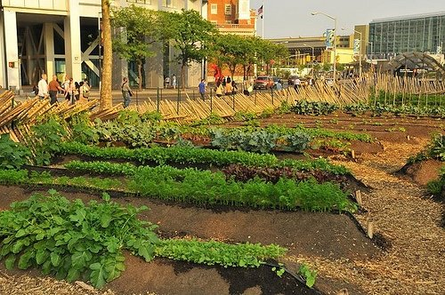 Urban Farm at Battery