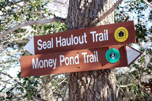 The Inland Trails at Montauk Point State Park