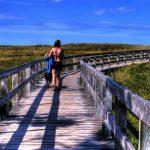 Long Island hikes