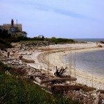 Breezy Summer Escape: Best North Fork Activities