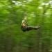 Ziplining at Hyde Park in the Hudson Valley thumbnail