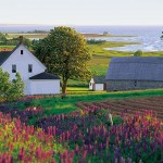 The Best Prince Edward Island Activities