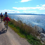 Biking the causeway