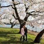 Just Inn: 10 Romantic Spring Getaways Under $200 Near NYC