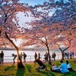 Three Spring Family Getaways Near NYC