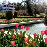 The Best Things to Do in Lenox, MA