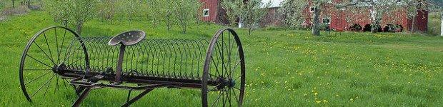 Berkshire Farm