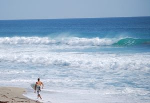 Jupiter Ocean Surfer Surf