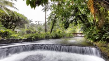 tabacon-hot-springs_new