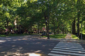 Hillhouse Avenue, New Haven
