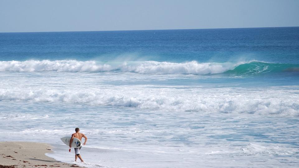 Jupiter Ocean Surfer Surf