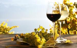oakland wine festival