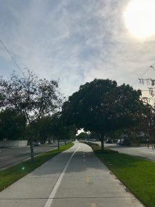 marvin braude bike path