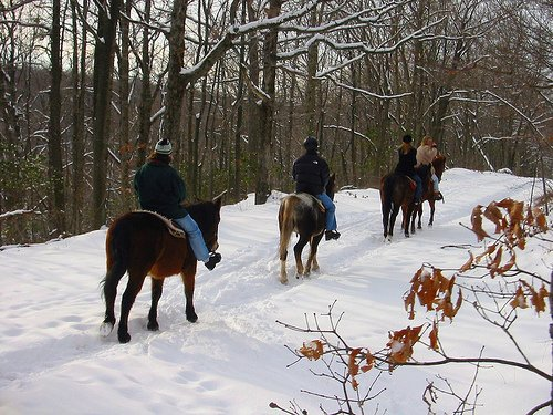 horseback riding winter poconos