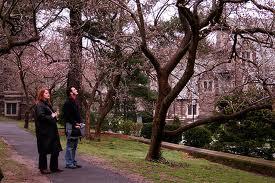 Princeton, NJ guide