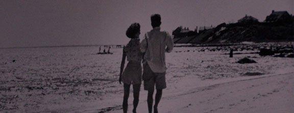 ted kennedy beach