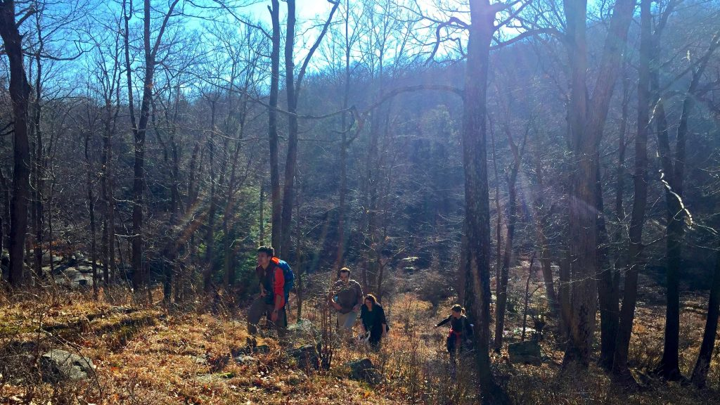 Harriman State Park Hiking in Sunshine by Sarah Knapp