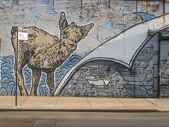 Broken Crow Graffiti
