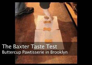 Dog Cookie Taste Test