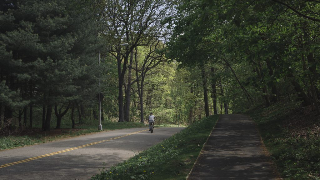 Biking in Forest Park Woodhaven NYC