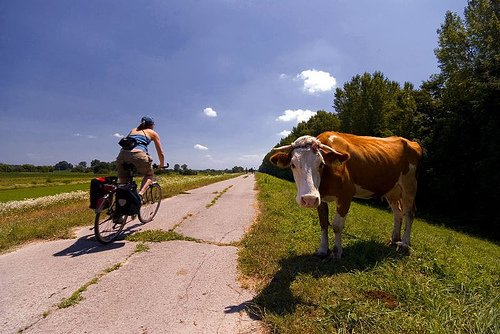 biking in the country