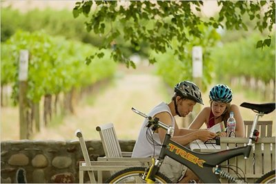 Biking finger lakes vineyard