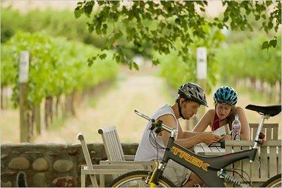 Biking finger lakes vineyard