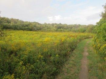 Clay Head Trail