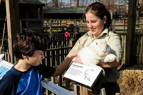 Queens Zoo Programs