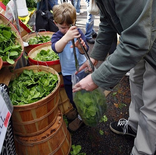 Greenmarkets with kids