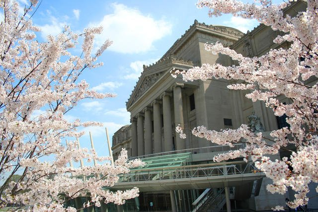 Brooklyn Museum Photo © Adam Husted 2005