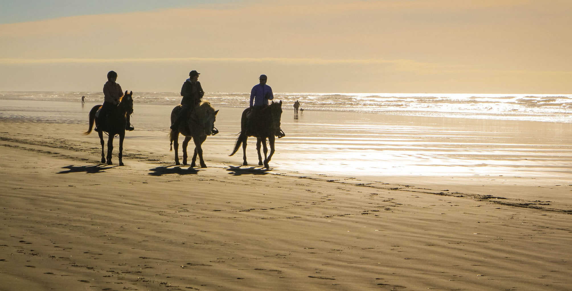 Where To Go Horseback Riding On A Beach Near Nyc