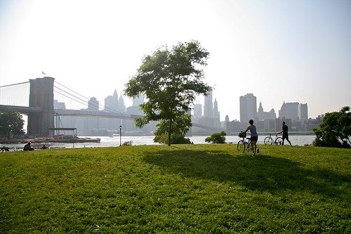 Empire Fulton Ferry State Park visitors wheel their bicycles toward the East River.