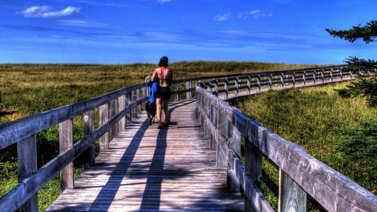 The 10 Best Hiking Trails On Long Island