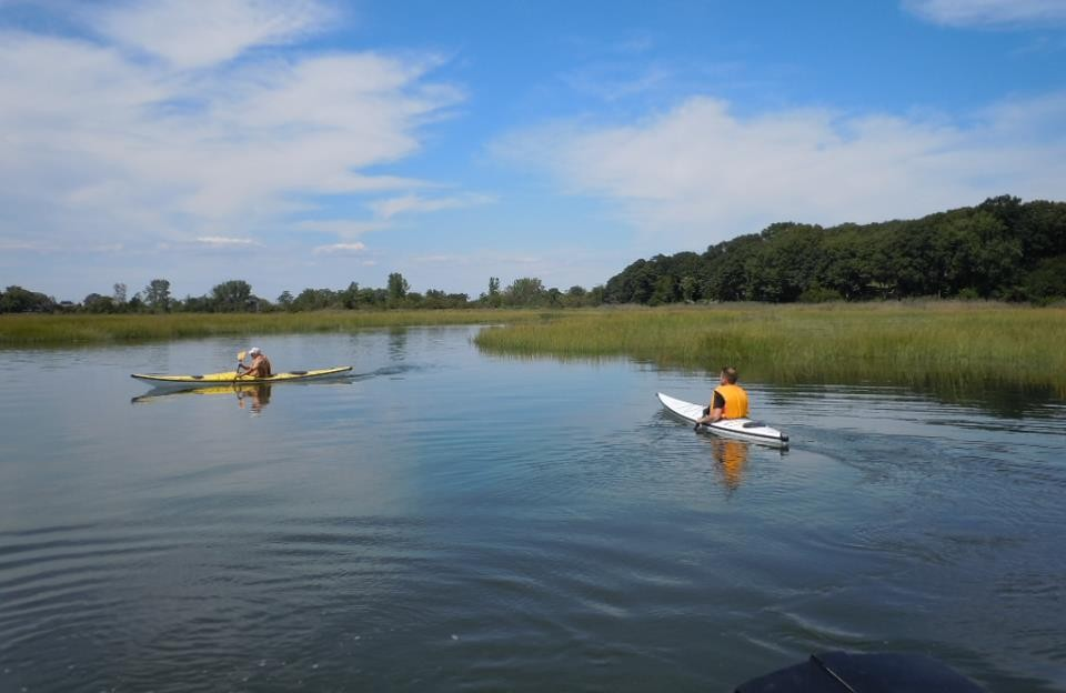 Oyster Bay kayaking
