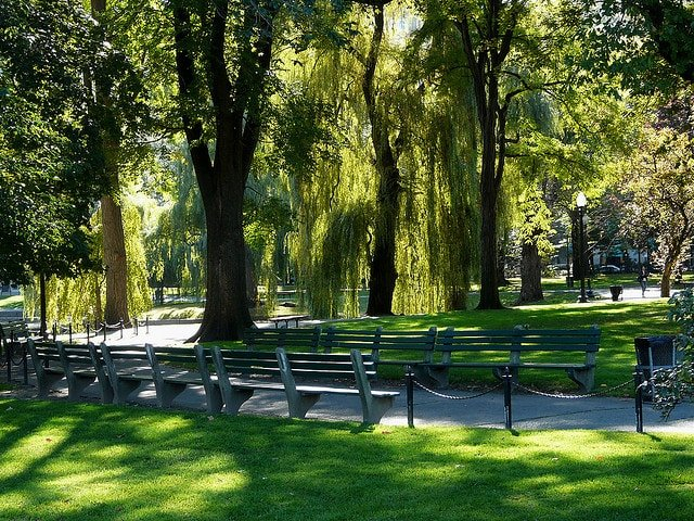 Why: Adjacent To Boston Common, The Public Garden Is A Swatch Of Green In  The Heart Of The City With The Title Of Oldest Botanical Garden In The  Nation.