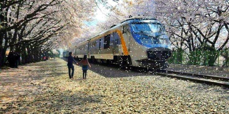 Romance the Rails