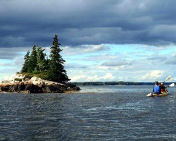 kayaking bar harbor